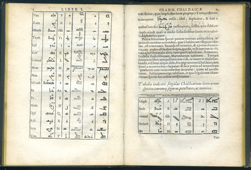 <em>Grammatica Syriaca, sive Chaldaica</em>
