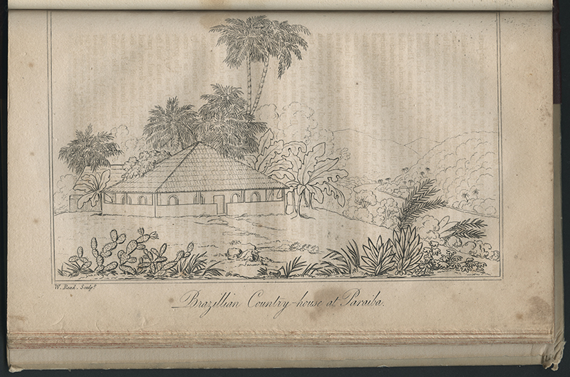 Travels in Brazil in 1815, 1816, and 1817