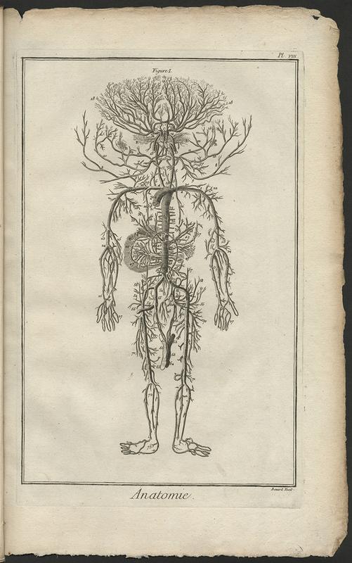 <em>Encyclopedie, ou dictionnaire raisonne des sciences, des arts et des metiers</em>