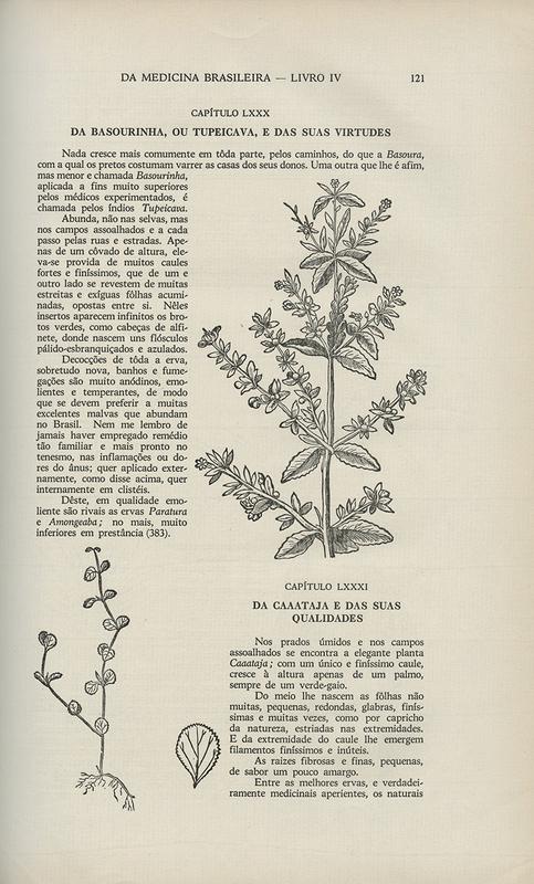 História natural do Brasil ilustrada
