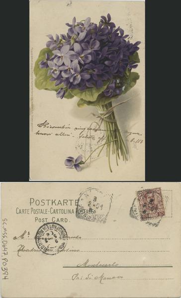http://libexh.library.vanderbilt.edu/impomeka/caruso-postcards/sc.mss.0647.p0394.jpg
