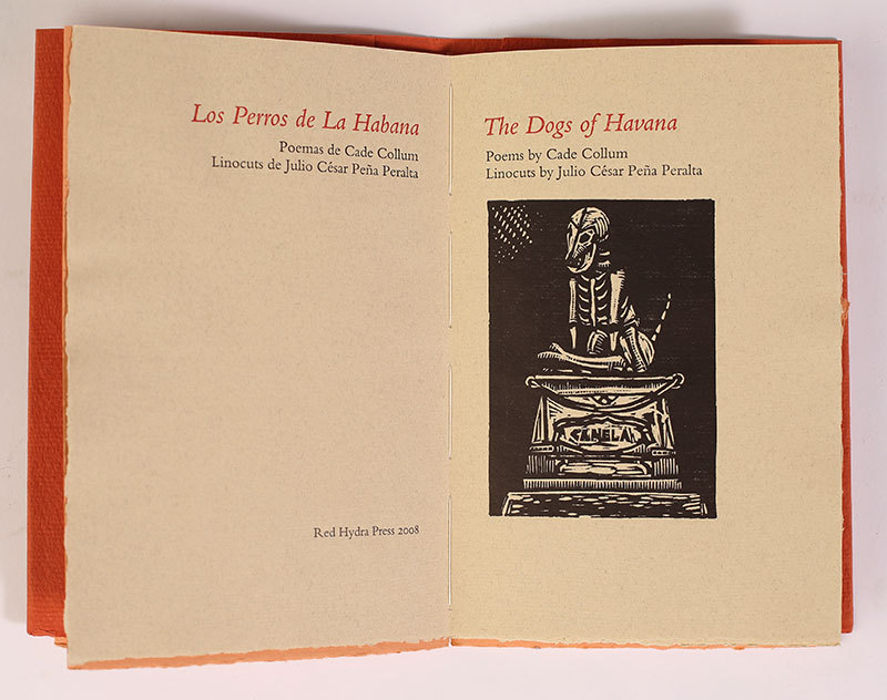 http://libexh.library.vanderbilt.edu/impomeka/artists-books-df-brown/dogs-of-havana.jpg