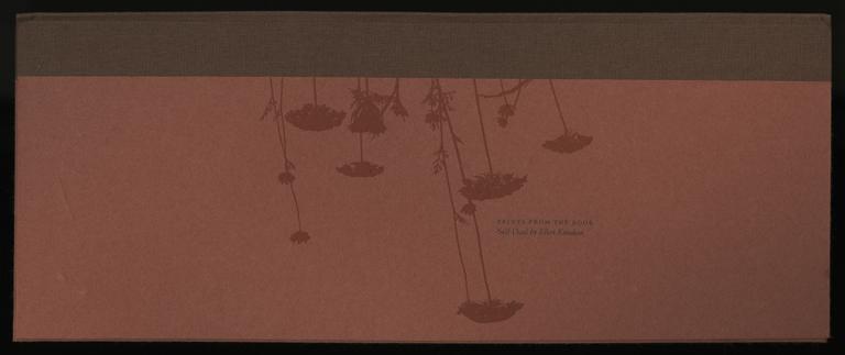 Knudson-Self-Dual_Deluxe-01-cover_FULL.jpg