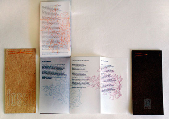 http://libexh.library.vanderbilt.edu/impomeka/artists-books-df-brown/small-Fossil-L.jpg