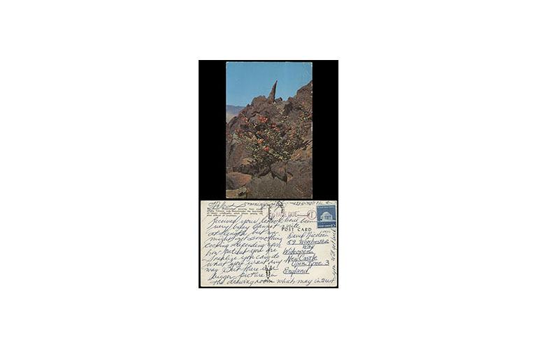 MS0412-C-Lynette_Fromme-Postcard-Feb_1975-01-AB_trans.jpg