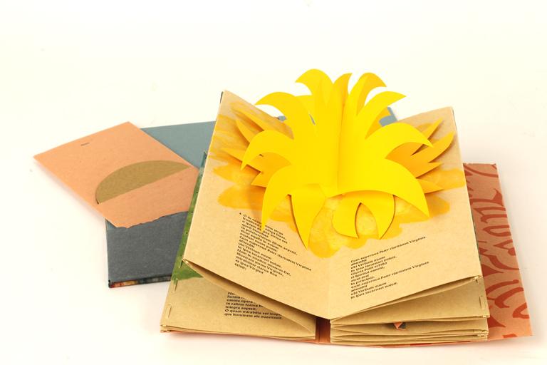 http://libexh.library.vanderbilt.edu/impomeka/artists-books-HART2288/17-VanVliet-Sapientlae-02_FULL.jpg
