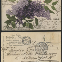 http://libexh.library.vanderbilt.edu/impomeka/caruso-postcards/sc.mss.0647.p0095.jpg