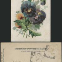 http://libexh.library.vanderbilt.edu/impomeka/caruso-postcards/sc.mss.0647.p0547.jpg