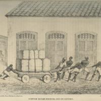 http://libexh.library.vanderbilt.edu/impomeka/travel/F_2511_H49-History_of_Brazil-01.jpg