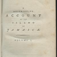 http://libexh.library.vanderbilt.edu/impomeka/travel/HELGUERA-F1870_B39v1-Jamaica-book-01.jpg