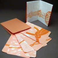 http://libexh.library.vanderbilt.edu/impomeka/artists-books-df-brown/kyle-Coupled-Voices-s.jpg