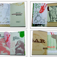 http://libexh.library.vanderbilt.edu/impomeka/artists-books-df-brown/crooked-wildgirls-L.jpg