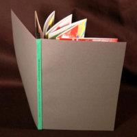 http://libexh.library.vanderbilt.edu/impomeka/artists-books-df-brown/437365021.0.l.jpg