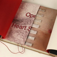 http://libexh.library.vanderbilt.edu/impomeka/artists-books-df-brown/Peven-OpenHeart-20130611SG112.jpg