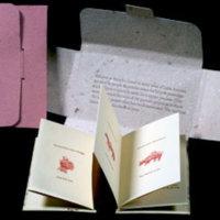 http://libexh.library.vanderbilt.edu/impomeka/artists-books-df-brown/Curly-Milagros-s.jpg