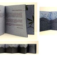 http://libexh.library.vanderbilt.edu/impomeka/artists-books-df-brown/down-High-road-L.jpg
