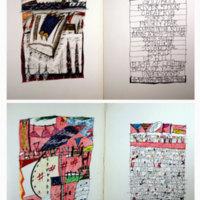 http://libexh.library.vanderbilt.edu/impomeka/artists-books-df-brown/sidelinger-woulda-L.jpg