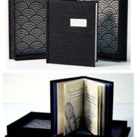 http://libexh.library.vanderbilt.edu/impomeka/artists-books-df-brown/down-speak-clamshell-L.jpg