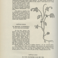 http://libexh.library.vanderbilt.edu/impomeka/travel/Medicinal_Plants_of_Brazil-01.jpg