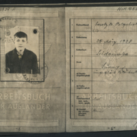 [Work Permit of Forced Worker Michael Garjaimow, Age 14]