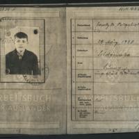 NIK9539A-Krupp-Nazi-Arbeitsbuch-01.jpg